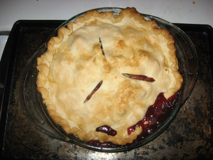 I made this rhubarb pie in July